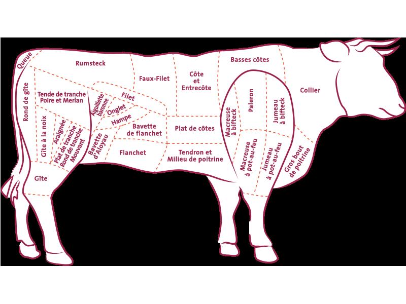 Franse vleesindeling van de koe